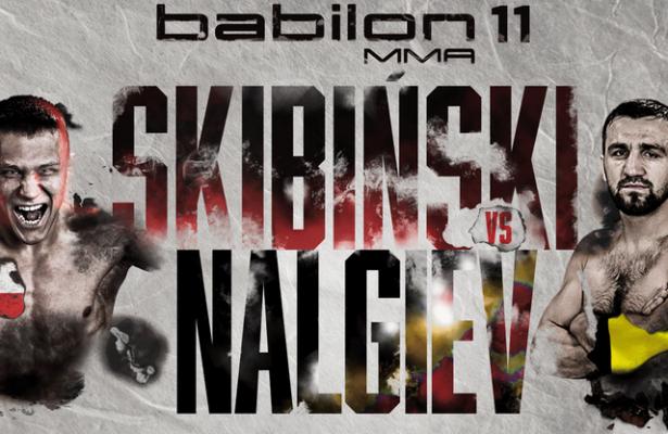 babilon mma 11